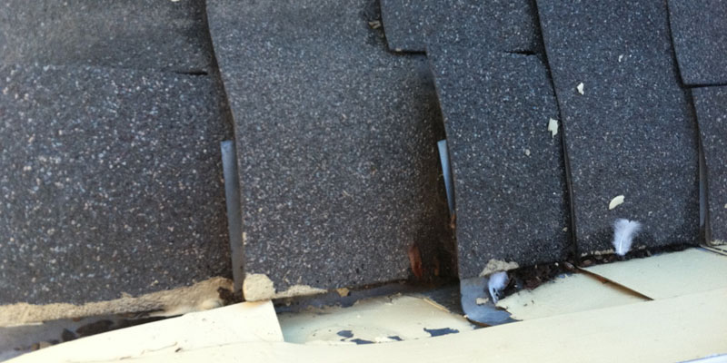 Inadequate or Improper Installation of Flashings